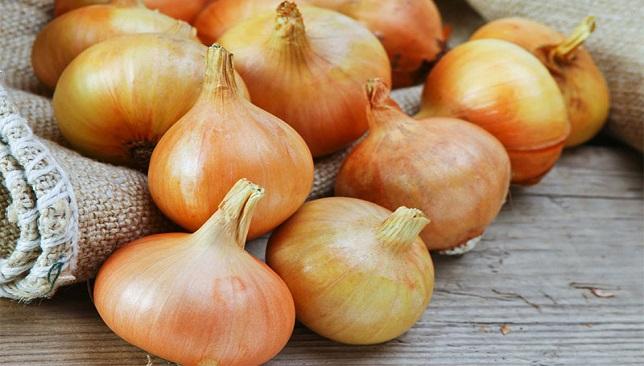 فوائد البصل