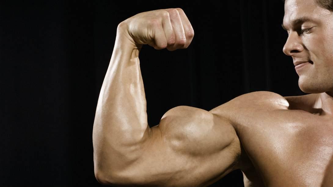 بناء عضلات الذراعين