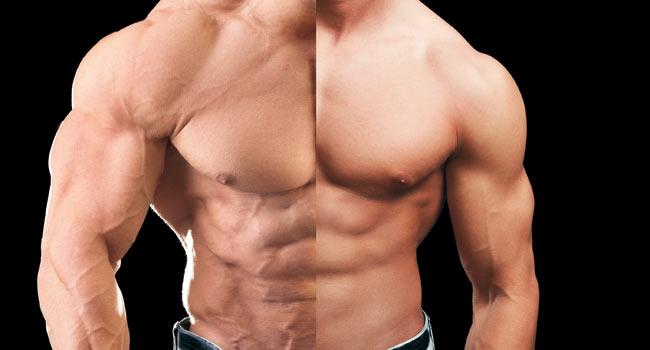 العضلات والهرمونات