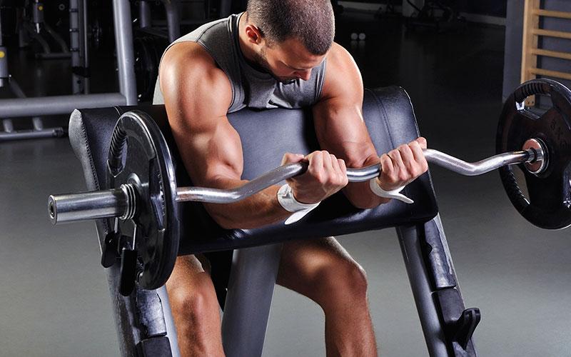 عضلة الباي