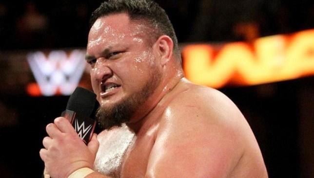 الصورة من Pro Wrestling Sheet